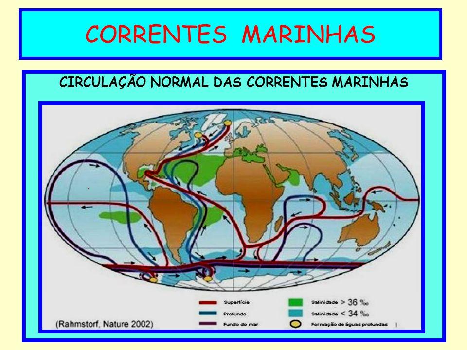 CIRCULAÇÃO NORMAL DAS CORRENTES MARINHAS