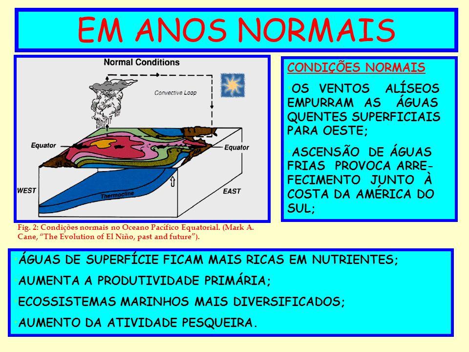 EM ANOS NORMAIS CONDIÇÕES NORMAIS