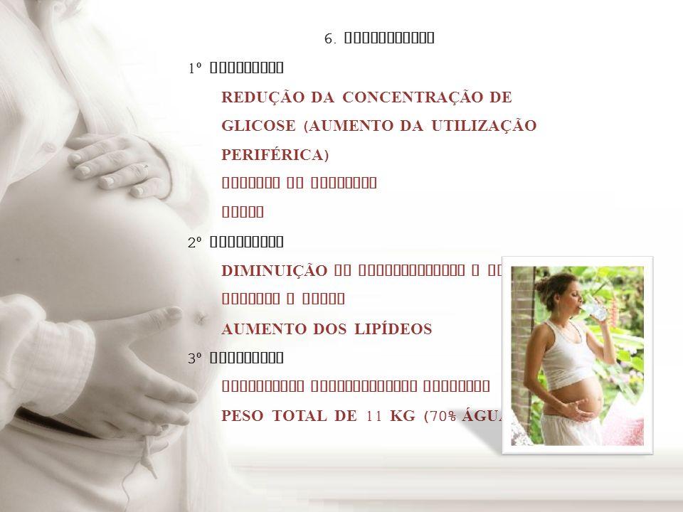 6. METABOLISMO 1º TRIMESTRE. REDUÇÃO DA CONCENTRAÇÃO DE GLICOSE (AUMENTO DA UTILIZAÇÃO PERIFÉRICA)