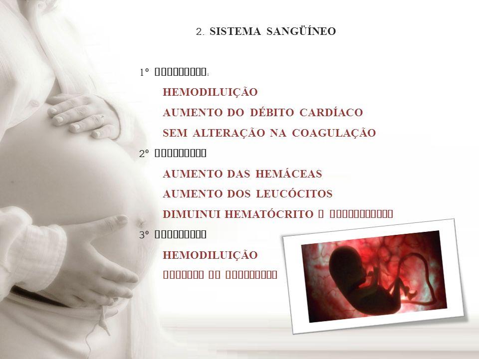 2. SISTEMA SANGÜÍNEO 1º TRIMESTRE: HEMODILUIÇÃO. AUMENTO DO DÉBITO CARDÍACO. SEM ALTERAÇÃO NA COAGULAÇÃO.
