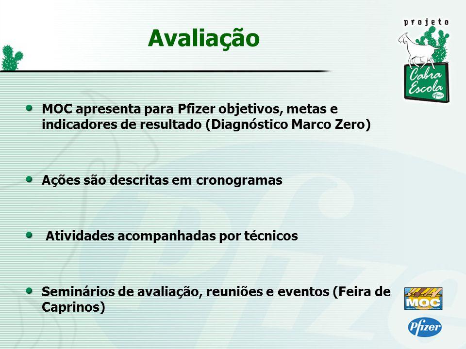 Avaliação MOC apresenta para Pfizer objetivos, metas e indicadores de resultado (Diagnóstico Marco Zero)
