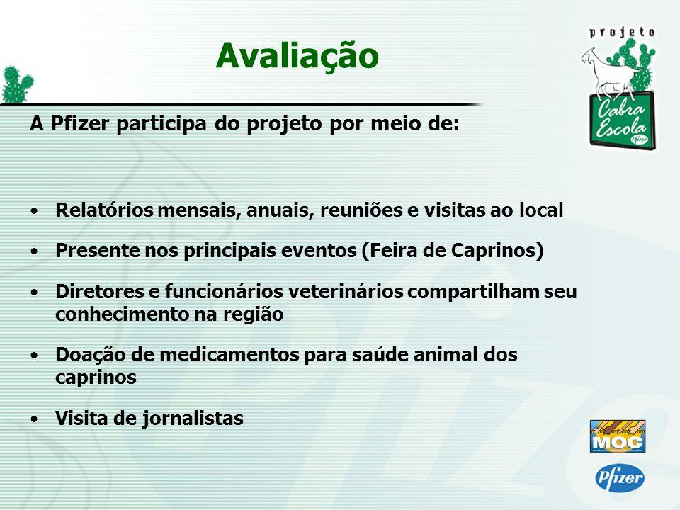 Avaliação A Pfizer participa do projeto por meio de: