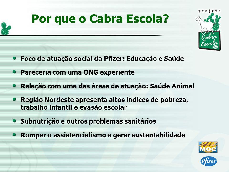 Por que o Cabra Escola Foco de atuação social da Pfizer: Educação e Saúde. Pareceria com uma ONG experiente.