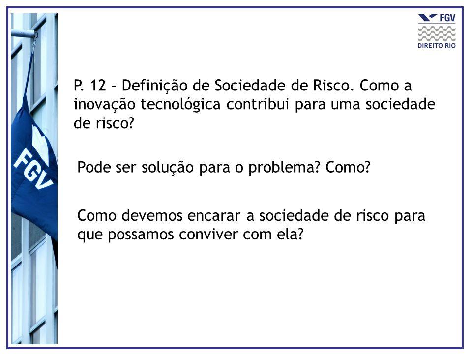 P. 12 – Definição de Sociedade de Risco