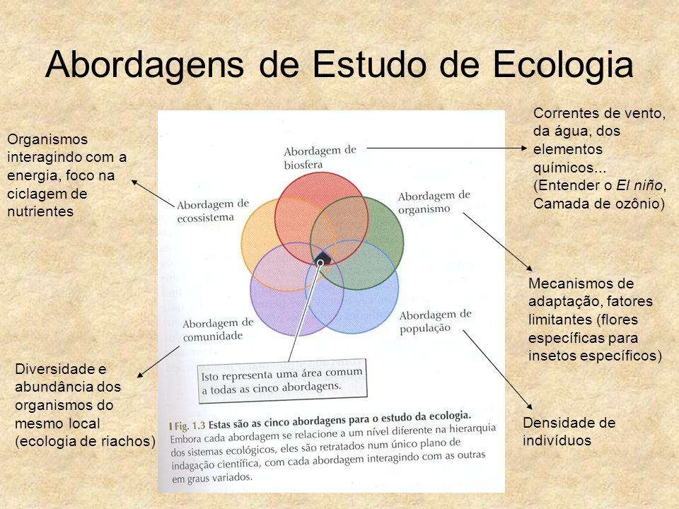 Abordagens de Estudo de Ecologia