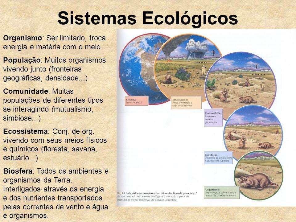 Sistemas Ecológicos Organismo: Ser limitado, troca energia e matéria com o meio.