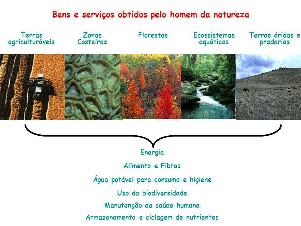 Bens e serviços obtidos pelo homem da natureza