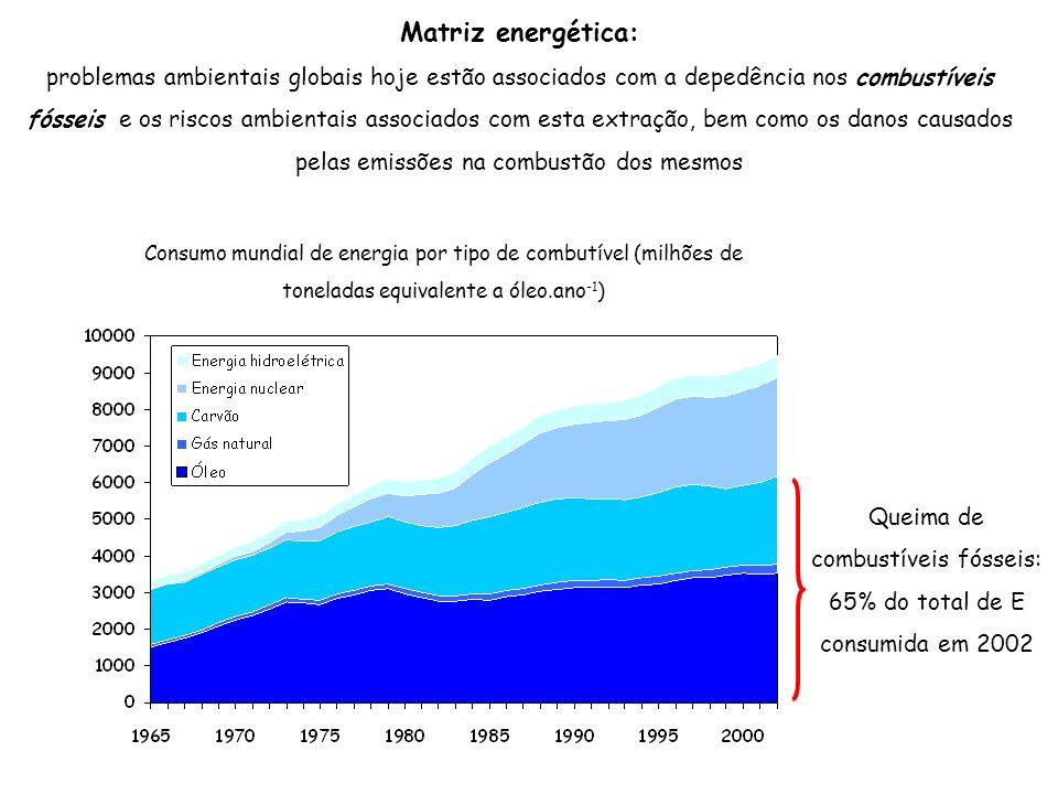 Queima de combustíveis fósseis: 65% do total de E consumida em 2002