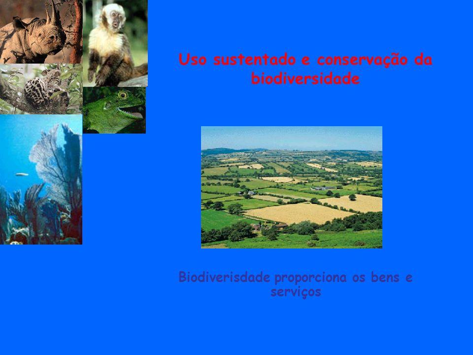 Uso sustentado e conservação da biodiversidade