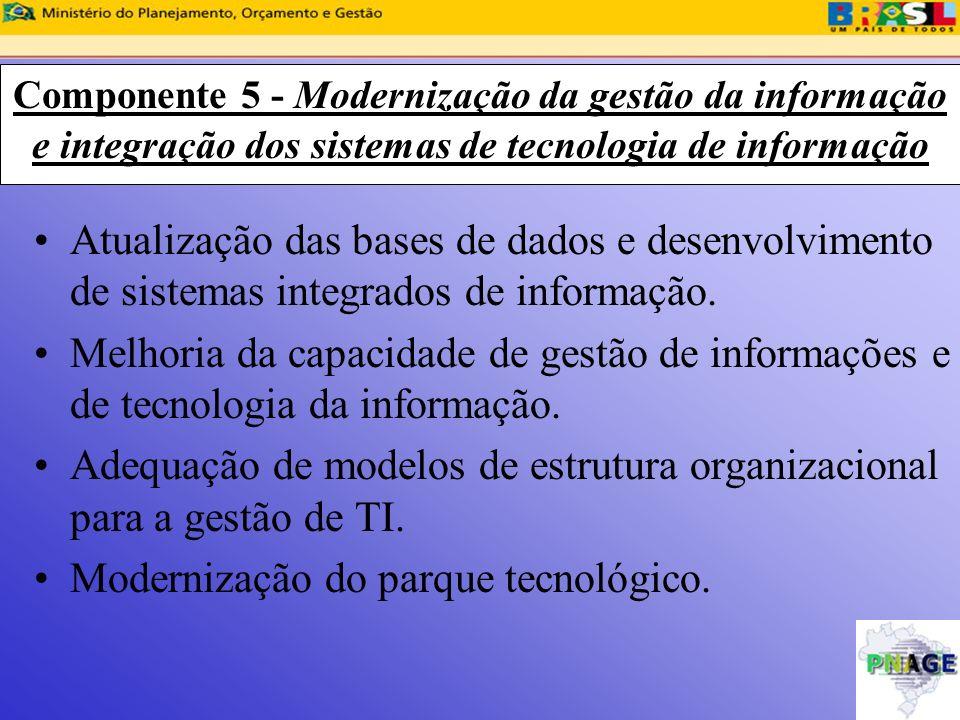 Adequação de modelos de estrutura organizacional para a gestão de TI.