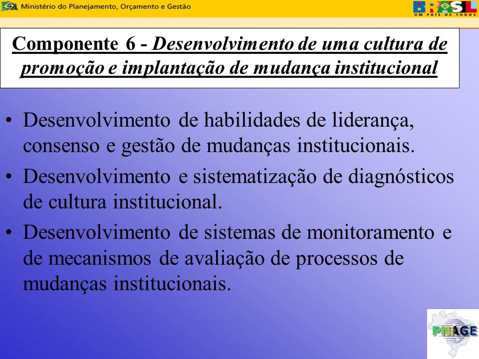 Componente 6 - Desenvolvimento de uma cultura de promoção e implantação de mudança institucional