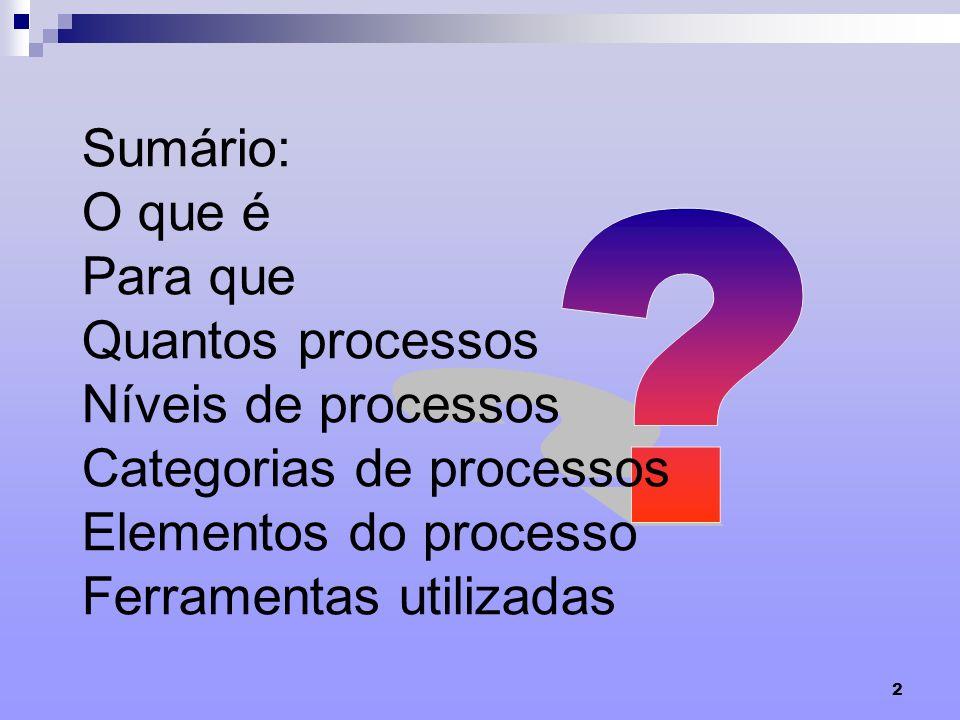 Sumário: O que é Para que Quantos processos Níveis de processos Categorias de processos Elementos do processo Ferramentas utilizadas.