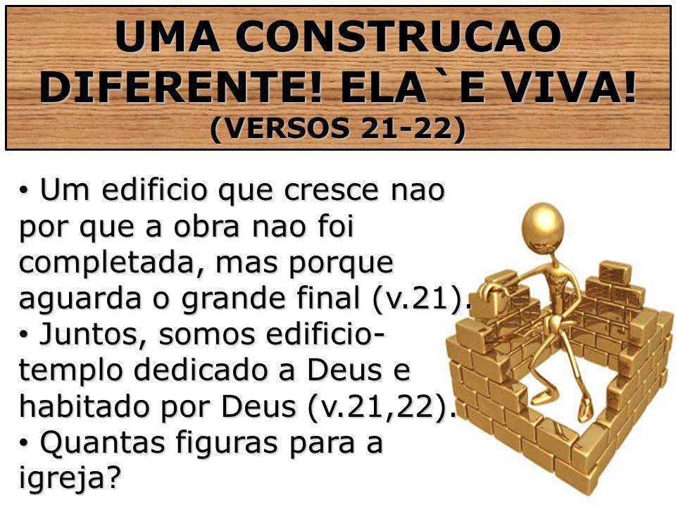 UMA CONSTRUCAO DIFERENTE! ELA`E VIVA!