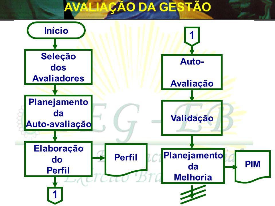 AVALIAÇÃO DA GESTÃO 1 Início Seleção dos Avaliadores Planejamento da