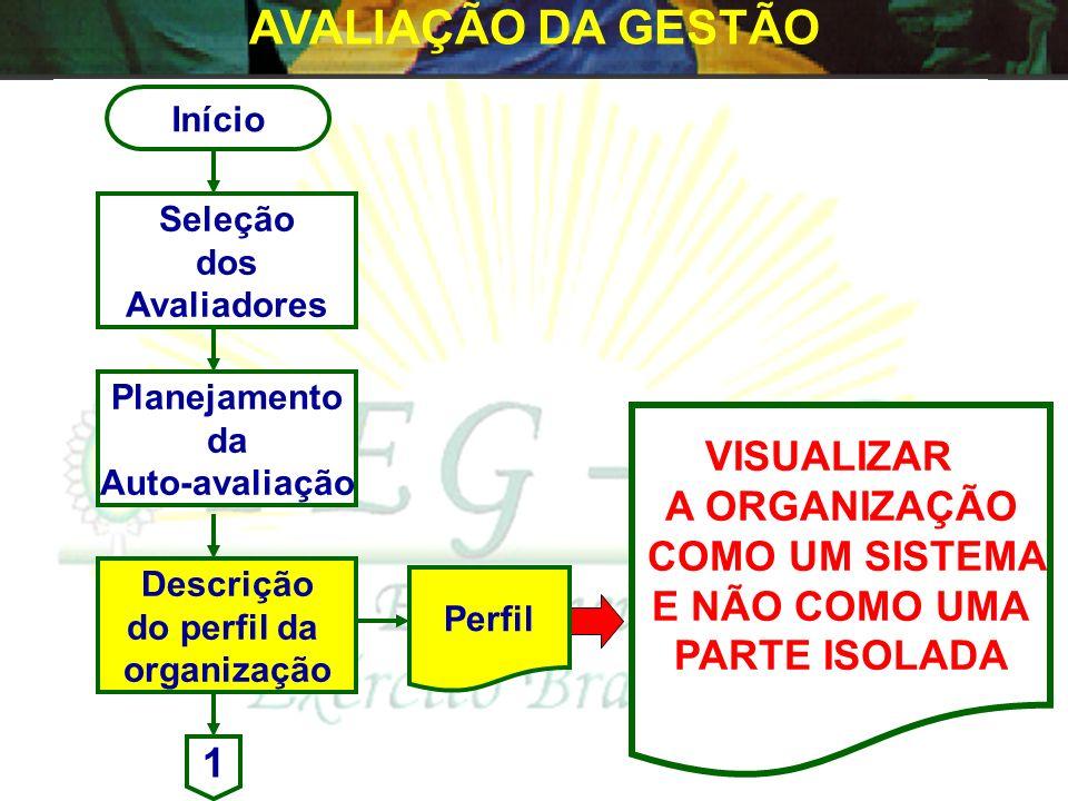 AVALIAÇÃO DA GESTÃO VISUALIZAR A ORGANIZAÇÃO COMO UM SISTEMA
