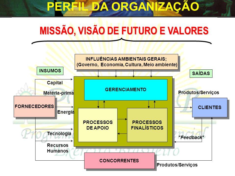PERFIL DA ORGANIZAÇÃO MISSÃO, VISÃO DE FUTURO E VALORES FORNECEDORES