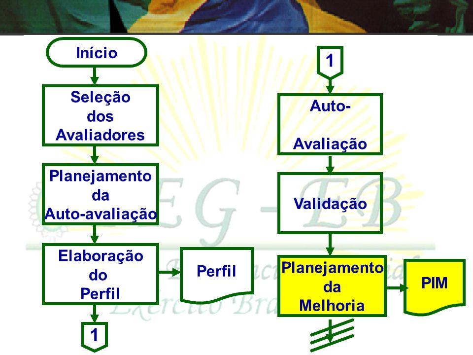 1 1 Início Seleção dos Avaliadores Auto- Avaliação Planejamento da