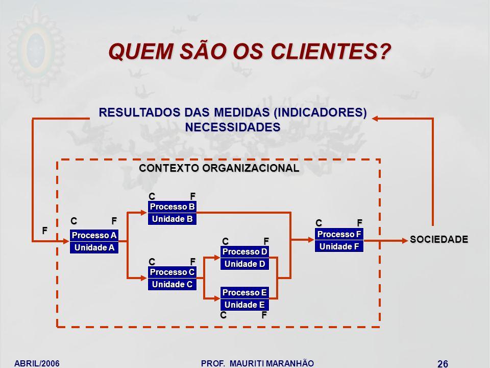 RESULTADOS DAS MEDIDAS (INDICADORES)