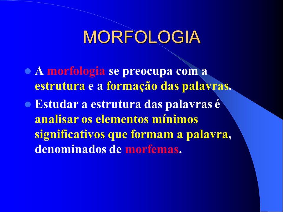 MORFOLOGIAA morfologia se preocupa com a estrutura e a formação das palavras.