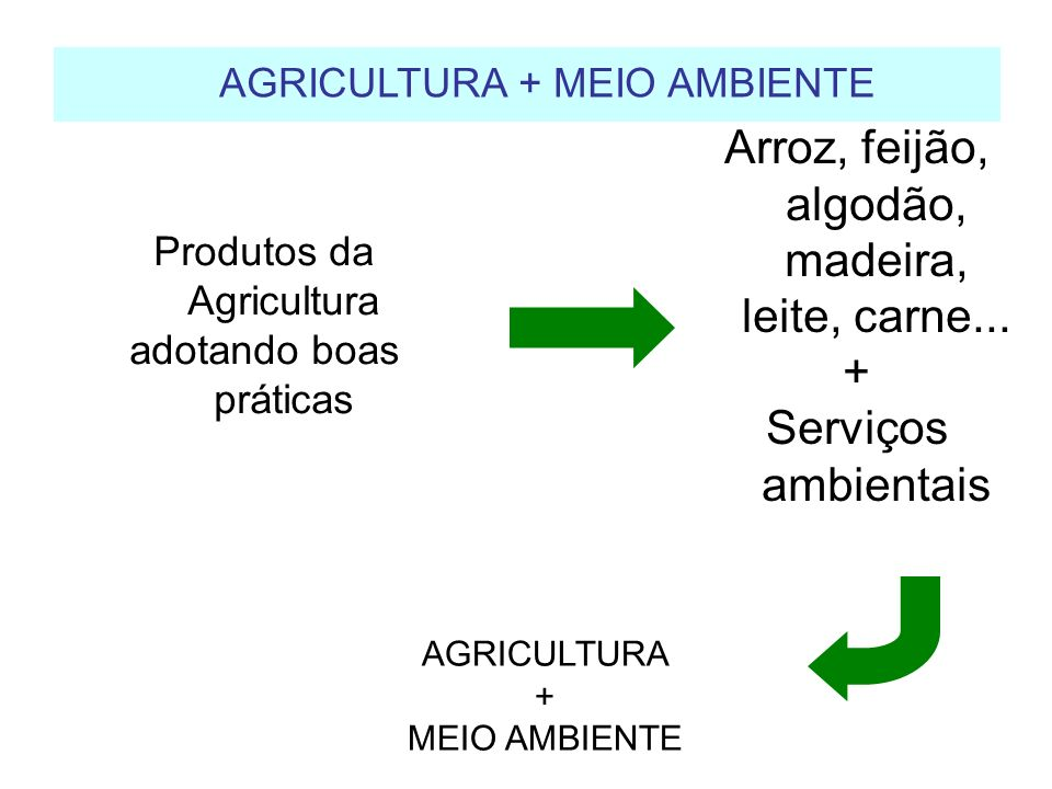 AGRICULTURA + MEIO AMBIENTE