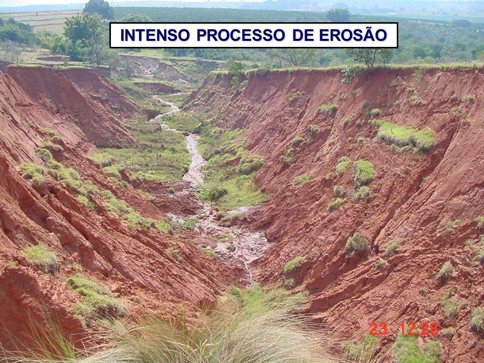 INTENSO PROCESSO DE EROSÃO