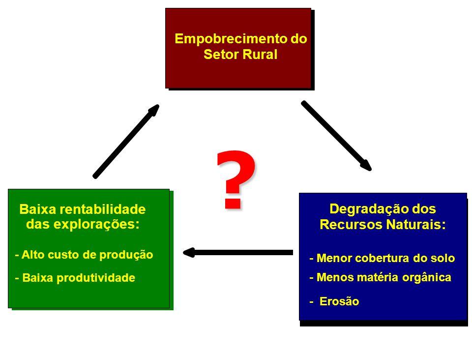 Empobrecimento do Setor Rural Baixa rentabilidade das explorações: