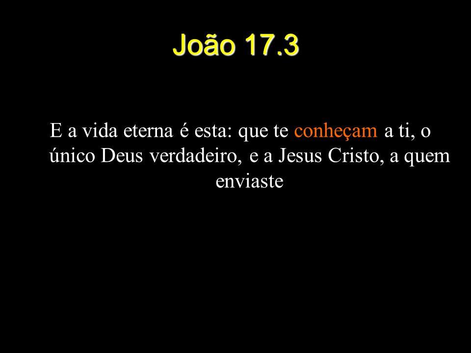 João 17.3 E a vida eterna é esta: que te conheçam a ti, o único Deus verdadeiro, e a Jesus Cristo, a quem enviaste.