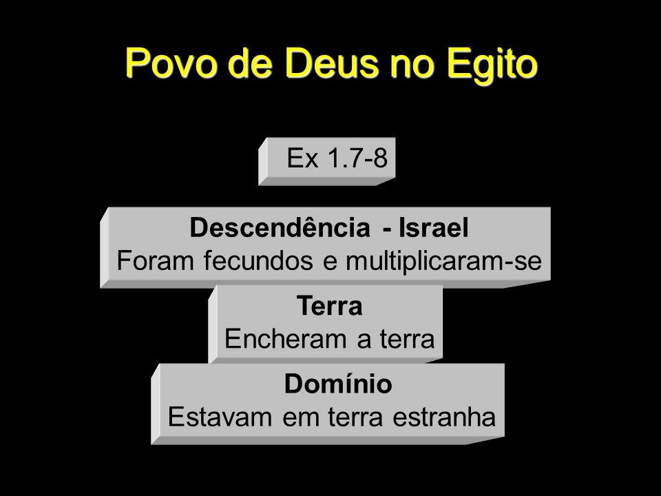 Povo de Deus no Egito Ex 1.7-8 Descendência - Israel