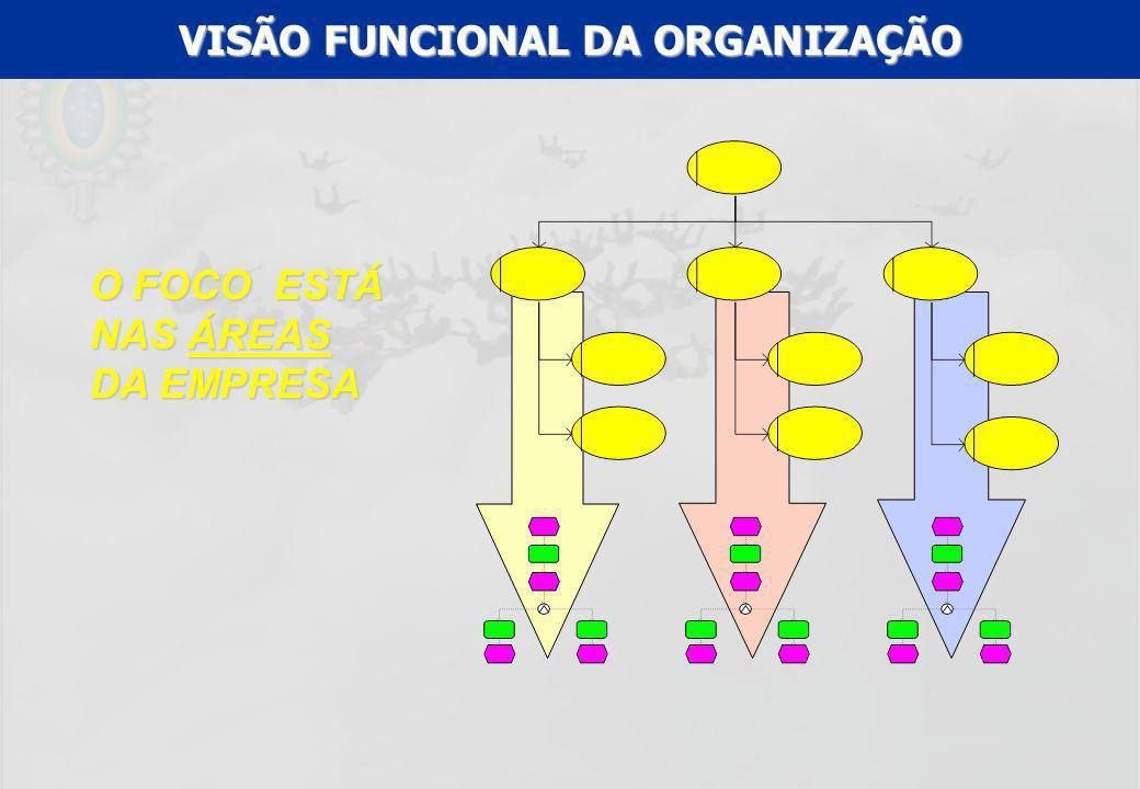 VISÃO FUNCIONAL DA ORGANIZAÇÃO