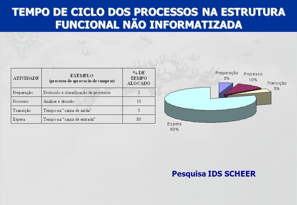 TEMPO DE CICLO DOS PROCESSOS NA ESTRUTURA FUNCIONAL NÃO INFORMATIZADA