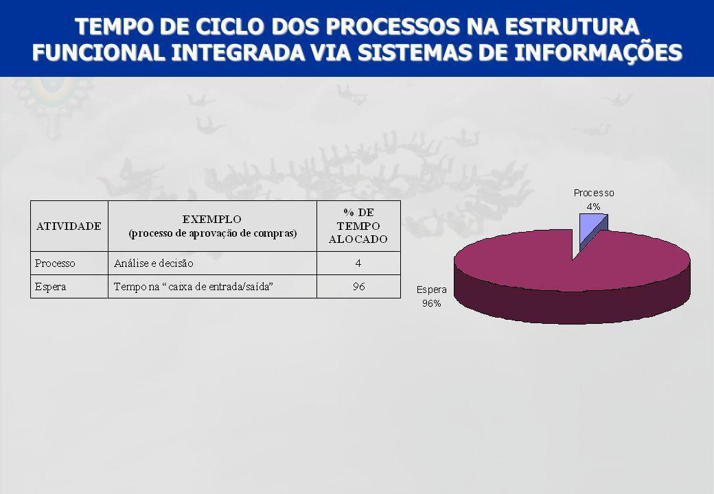 TEMPO DE CICLO DOS PROCESSOS NA ESTRUTURA FUNCIONAL INTEGRADA VIA SISTEMAS DE INFORMAÇÕES