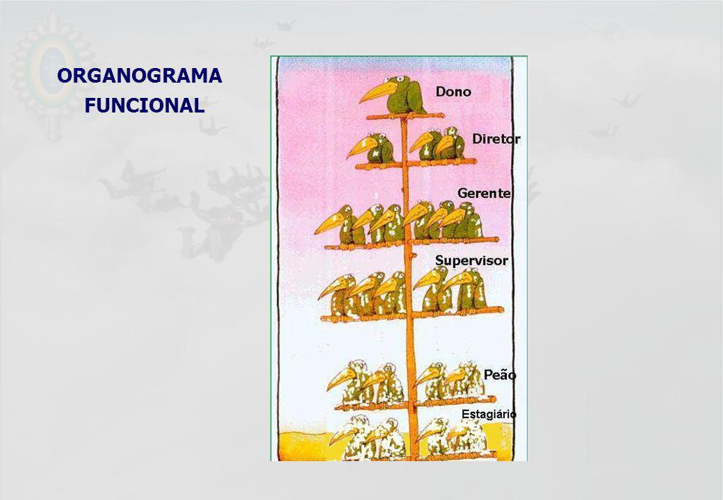 ORGANOGRAMA FUNCIONAL