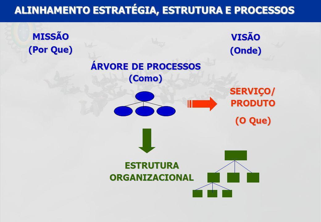 ALINHAMENTO ESTRATÉGIA, ESTRUTURA E PROCESSOS ESTRUTURA ORGANIZACIONAL