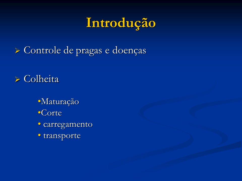 Introdução Controle de pragas e doenças Colheita Maturação Corte