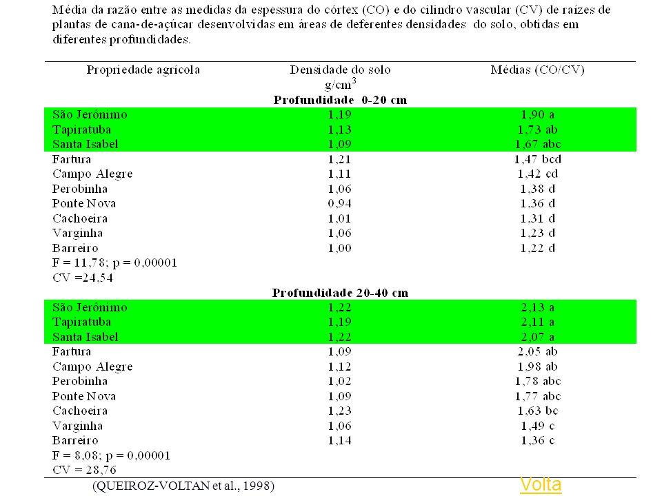 Volta (QUEIROZ-VOLTAN et al., 1998)