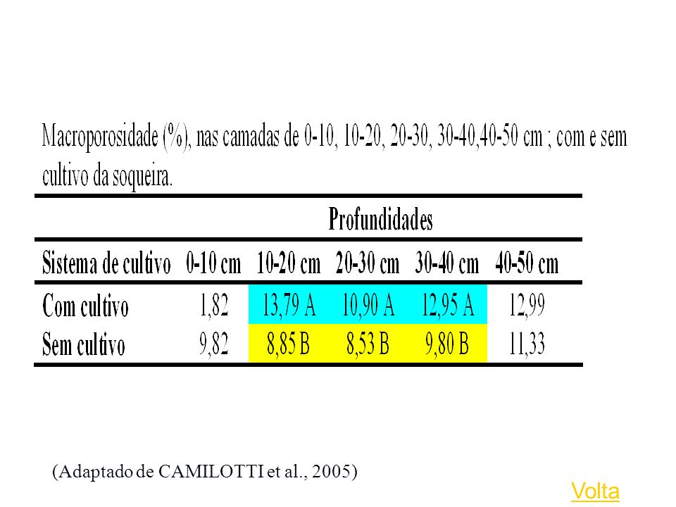 (Adaptado de CAMILOTTI et al., 2005)