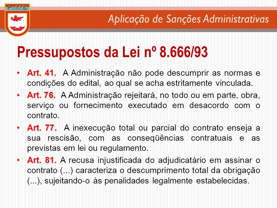 Pressupostos da Lei nº 8.666/93