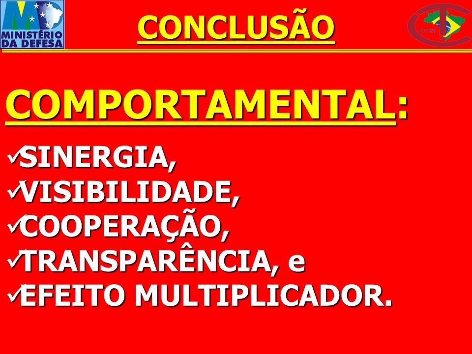 COMPORTAMENTAL: CONCLUSÃO SINERGIA, VISIBILIDADE, COOPERAÇÃO,