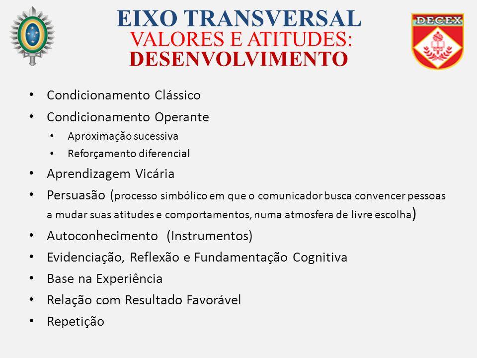 EIXO TRANSVERSAL VALORES E ATITUDES: DESENVOLVIMENTO