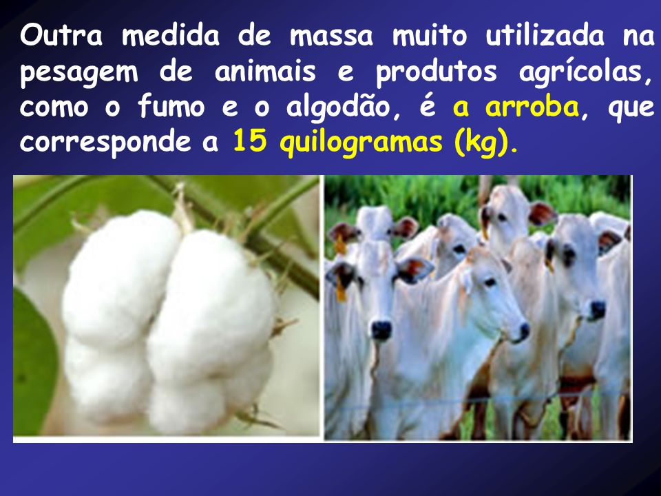 Outra medida de massa muito utilizada na pesagem de animais e produtos agrícolas, como o fumo e o algodão, é a arroba, que corresponde a 15 quilogramas (kg).