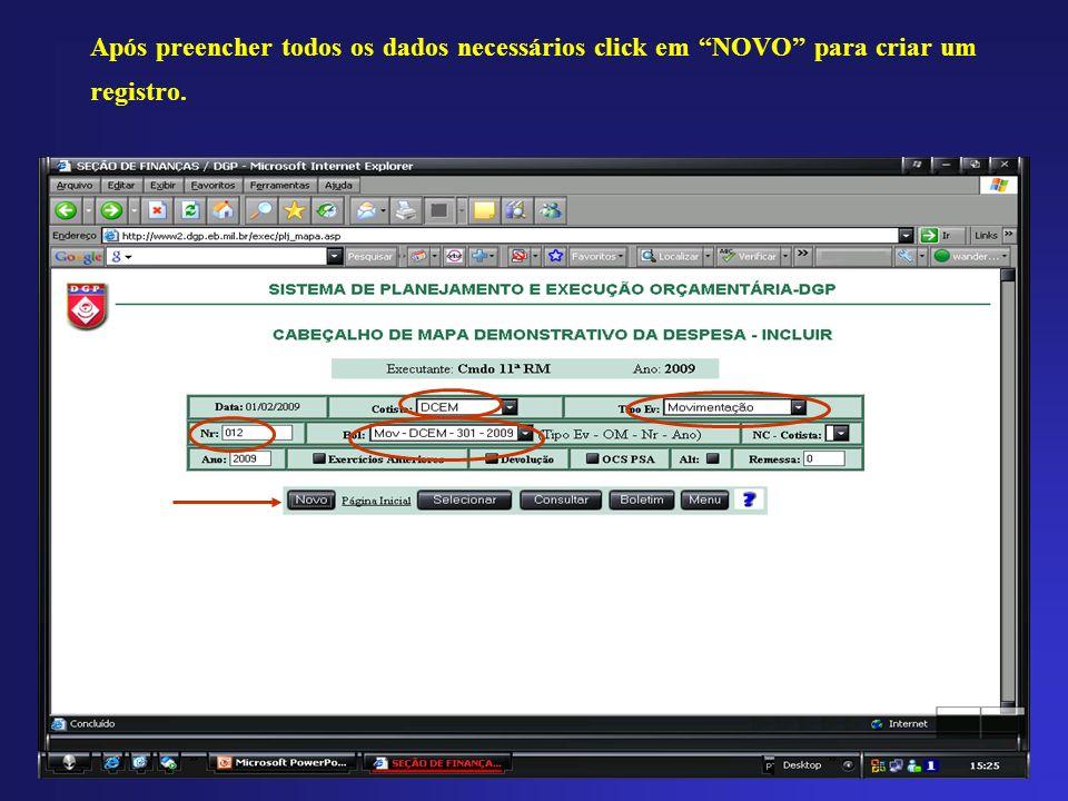 Após preencher todos os dados necessários click em NOVO para criar um registro.