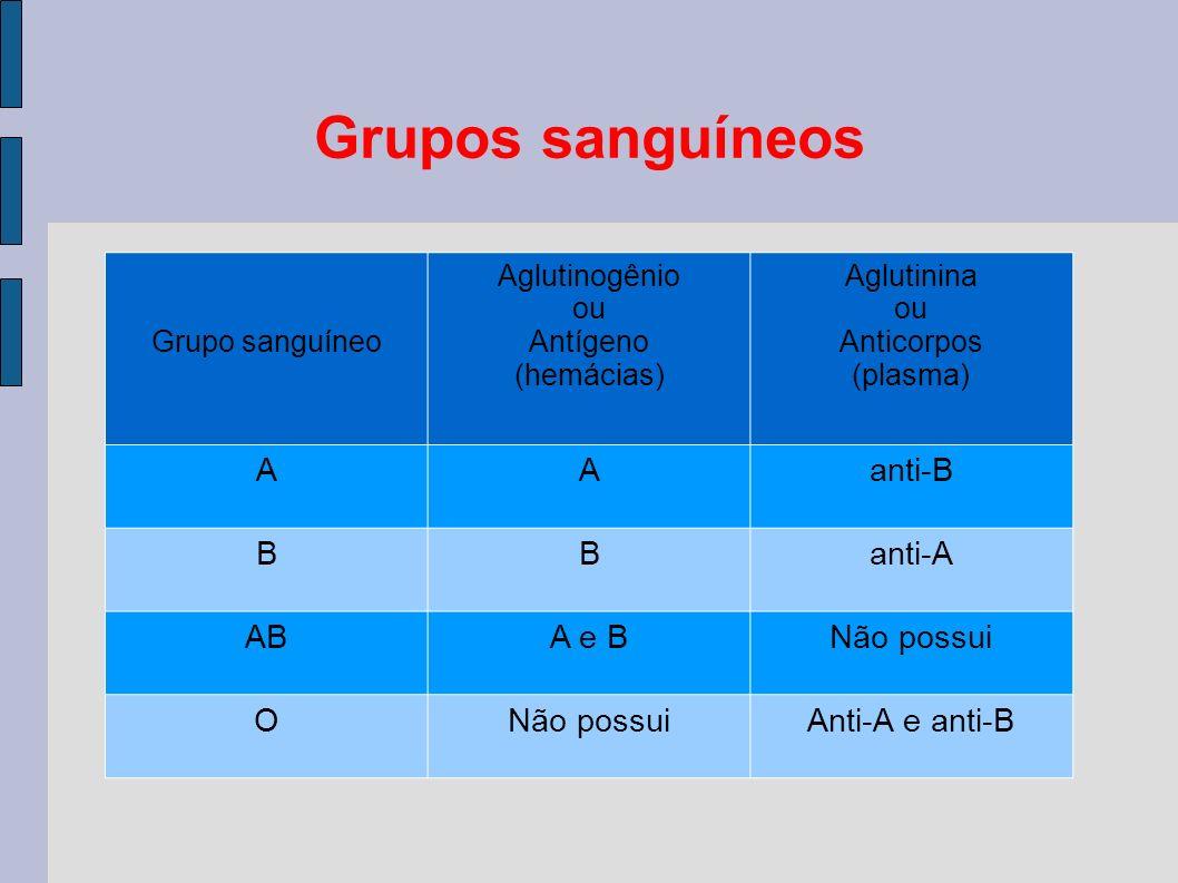 Grupos sanguíneos A anti-B B anti-A AB A e B Não possui O