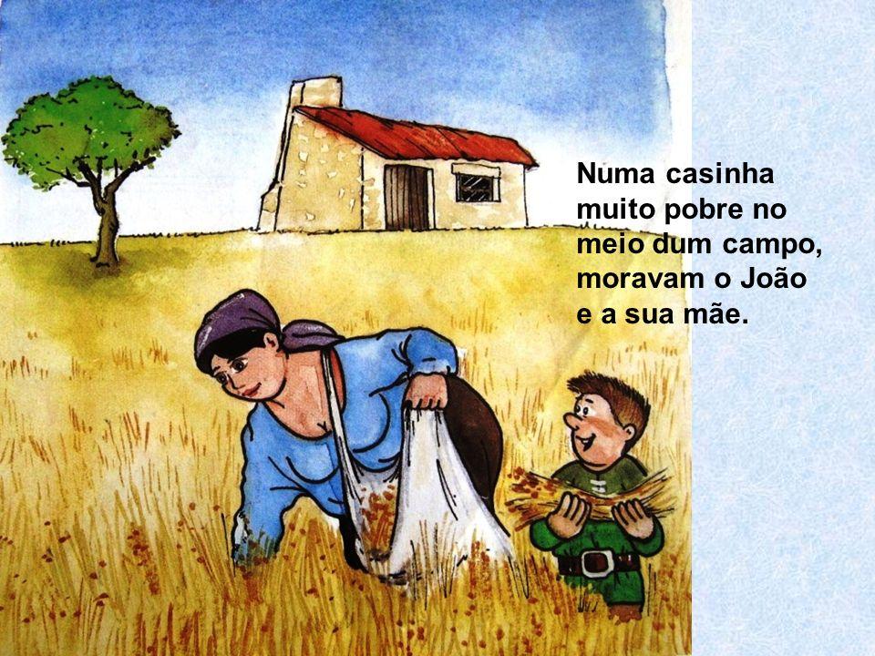 Numa casinha muito pobre no meio dum campo, moravam o João e a sua mãe.