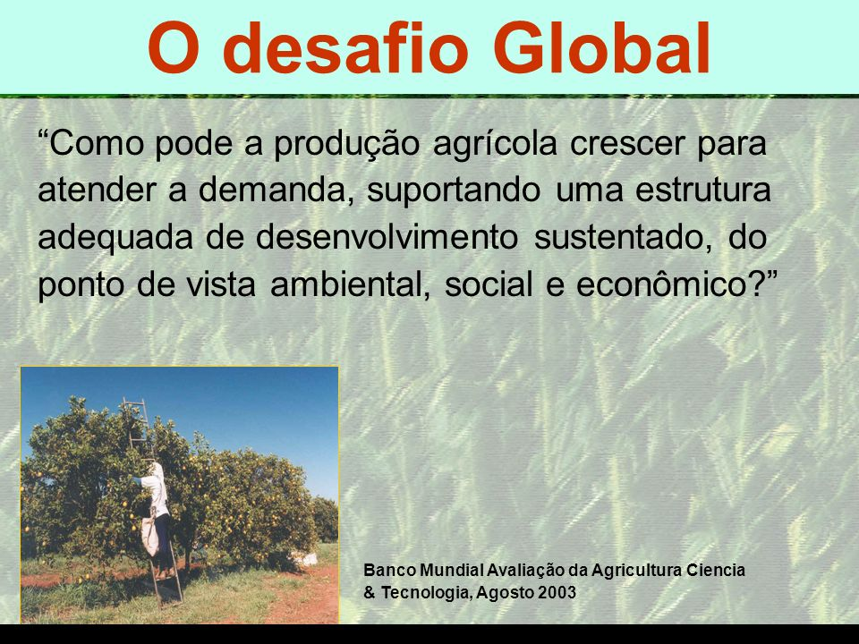 O desafio Global O DESAFIO GLOBAL O DESAFIO GLOBAL
