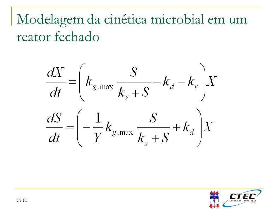 Modelagem da cinética microbial em um reator fechado