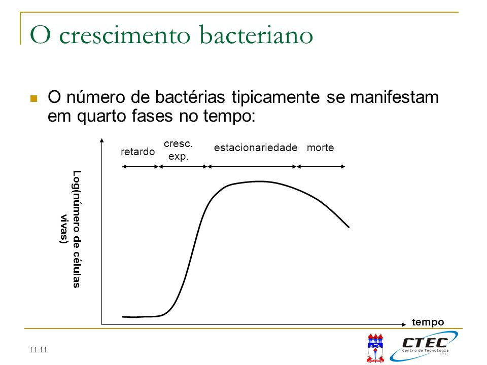 O crescimento bacteriano