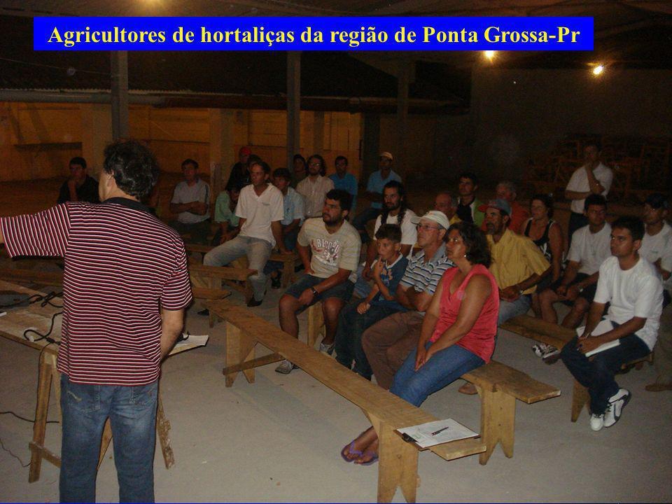 Agricultores de hortaliças da região de Ponta Grossa-Pr