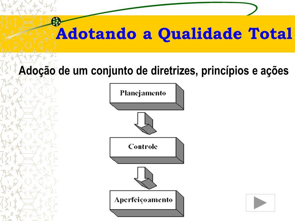 Adoção de um conjunto de diretrizes, princípios e ações
