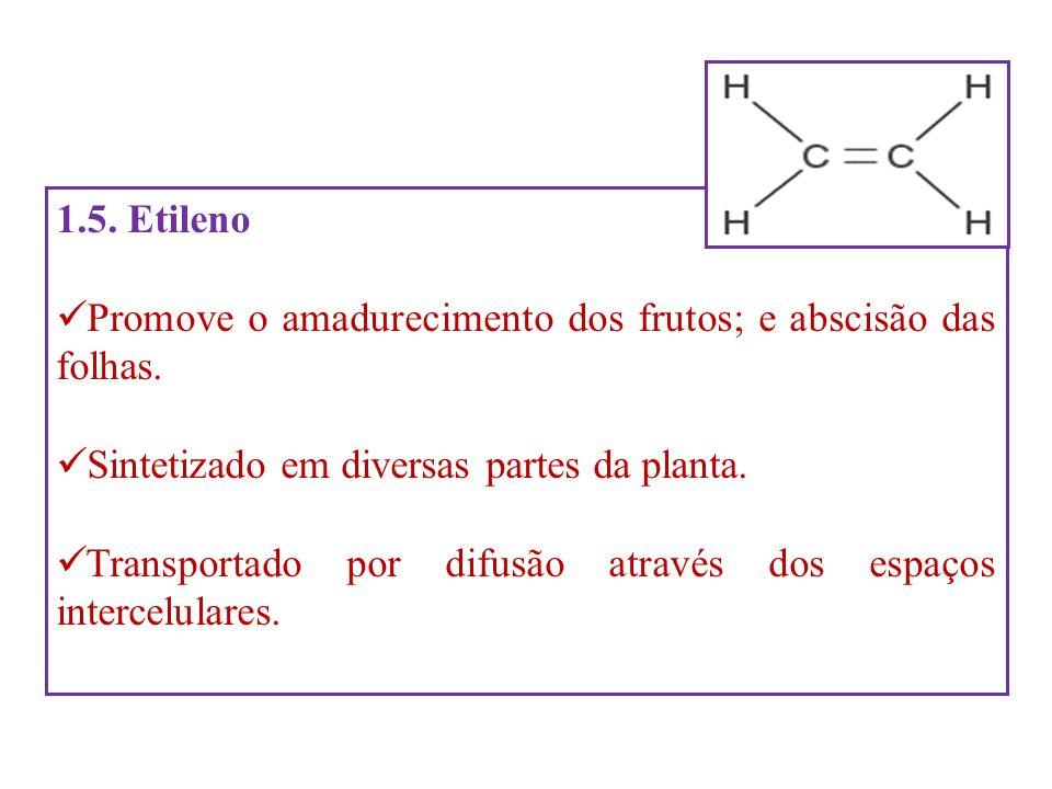 1.5. Etileno Promove o amadurecimento dos frutos; e abscisão das folhas. Sintetizado em diversas partes da planta.