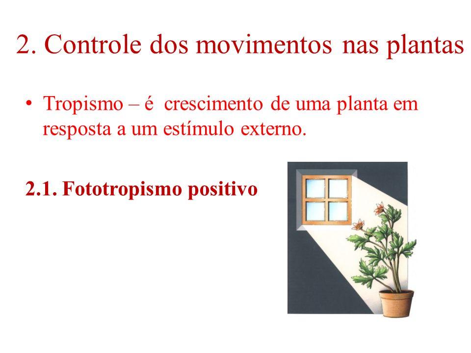 2. Controle dos movimentos nas plantas